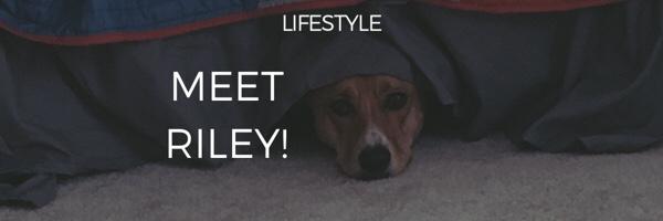 Meet Riley!